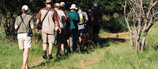 Vomba Tours & Safaris - Tour Operator - Kruger National Park
